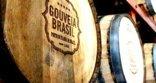 Gouveia Brasil