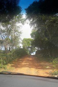 Nos caminhos do Belo Vale