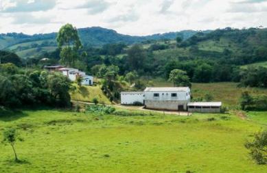Alambique da Cachaça Velho Ferreira, Bichinho