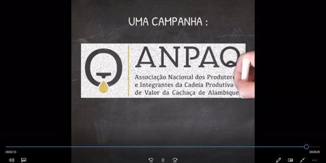 video da Anpaq